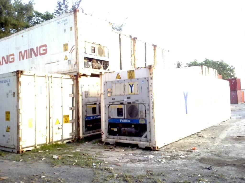 Container lạnh xuất khẩu