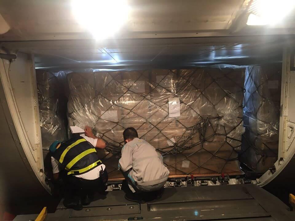 TTL nhận gửi hàng hóa nhập khẩu từ Đức về Việt Nam