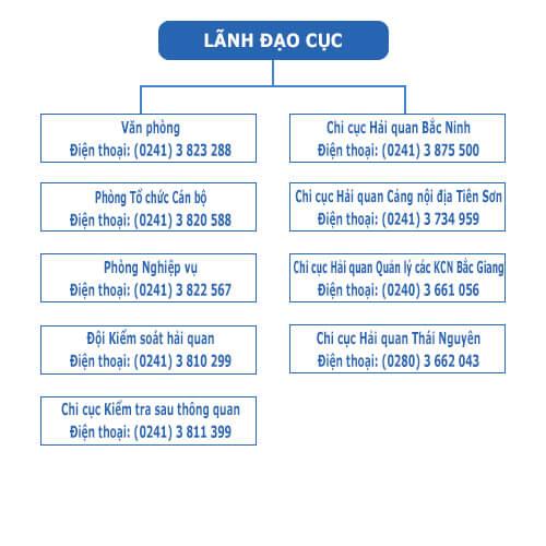 Sơ đồ tổ chức Cục Hải quan Bắc Ninh